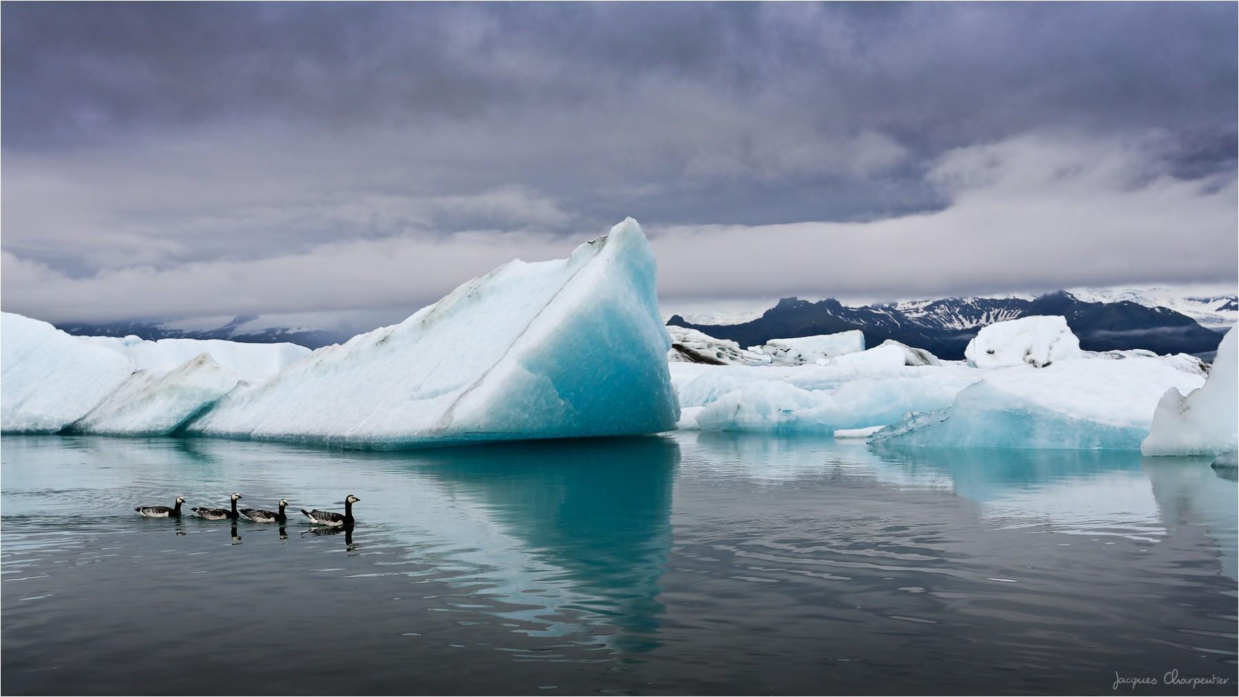 Lac Jokulsarlon, Islande 2016 © Jacques Charpentier