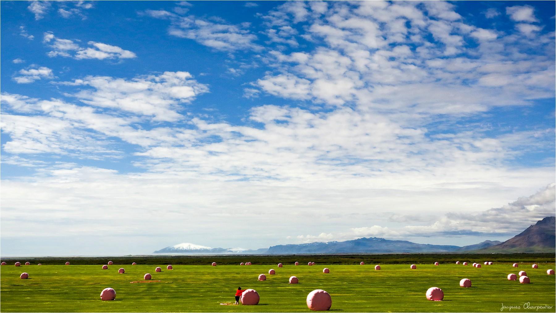 Le gilet rouge, Islande 2016 © Jacques Charpentier